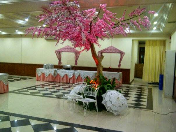 Pohon sakura inceran saya